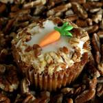 Spent – {Carrot Cake]