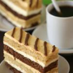 Me?  On the Martha Stewart Show? – {Chocolate, Mango and Coconut Cream Cake}