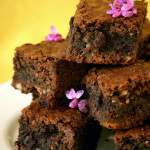 Goof – {Ultimate Chocolate Brownies}