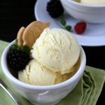 Flop – {Noyaux Ice Cream}
