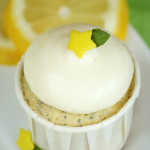 Shop – {Filled Lemon Poppy Seed Cupcakes}