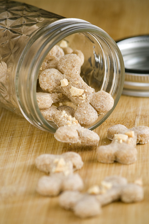 Pup – {Peanut Butter Dog Treats}