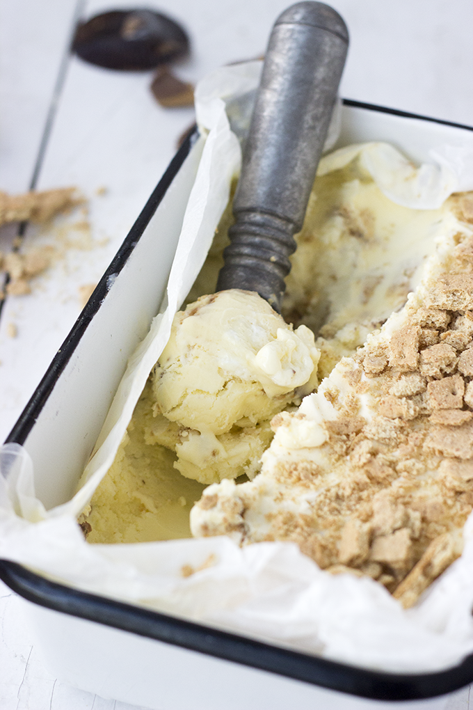 S'meese mascarpone custard ice cream. Ultra rich and creamy. The cheese makes it silky and it's hard to beat the combo of chocolate, peanut butter, and graham crackers!
